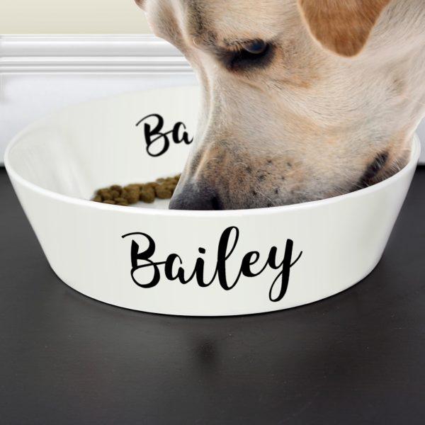 Personalised Any Name 20cm Large Bone China Pet Bowl