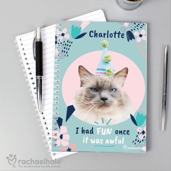 Rachael Hale 'I Had Fun Once' Cat A5 Notebook
