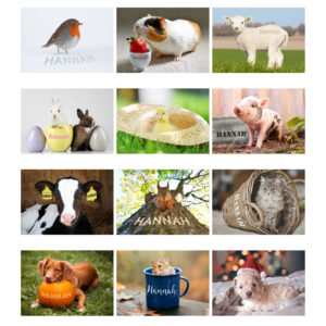 A4 Cute Animals Calendar