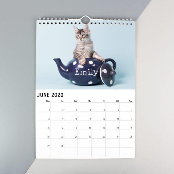 A4 Cats & Kittens Calendar
