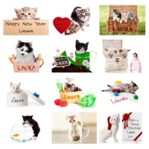 Your Cat-tastic A4 Wall Calendar