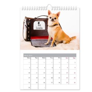 Your Barking Mad A4 Wall Calendar