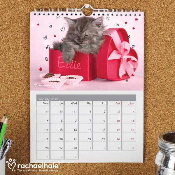 Rachael Hale A4 Cats Calendar