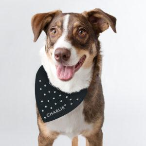 Personalied Paw Print Dog Bandana